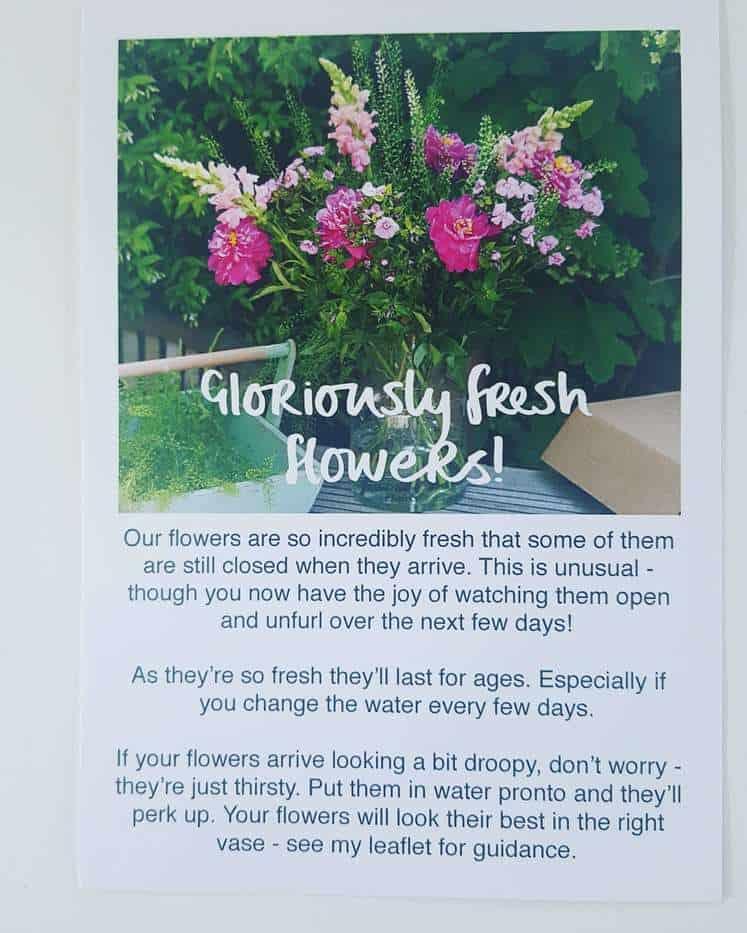 Freddies Flowers Subscription Box