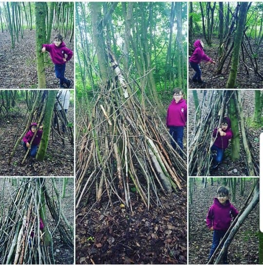 Homeschool activities - make a den and forage for sticks